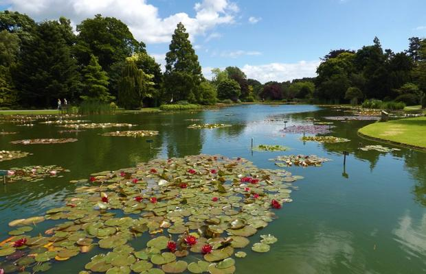 Our traditional visit to this popular venue. Stroll the gardens, visit the museum.